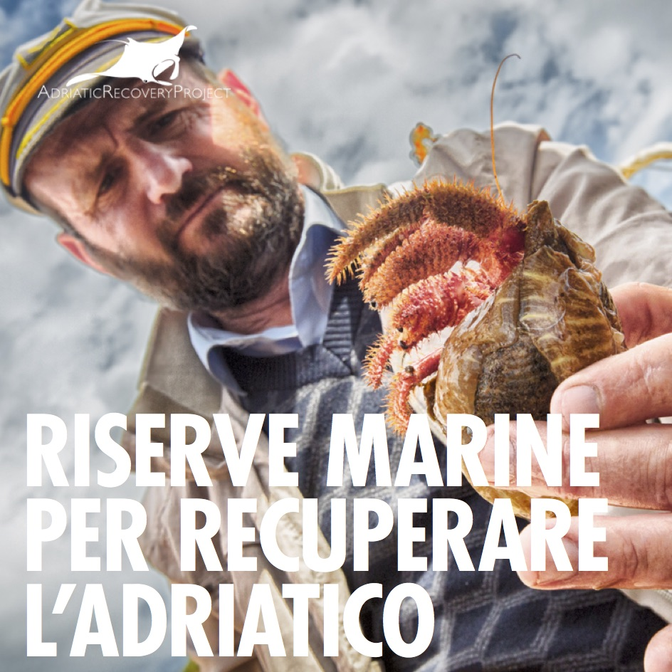 adriatic_brochure 2019_web